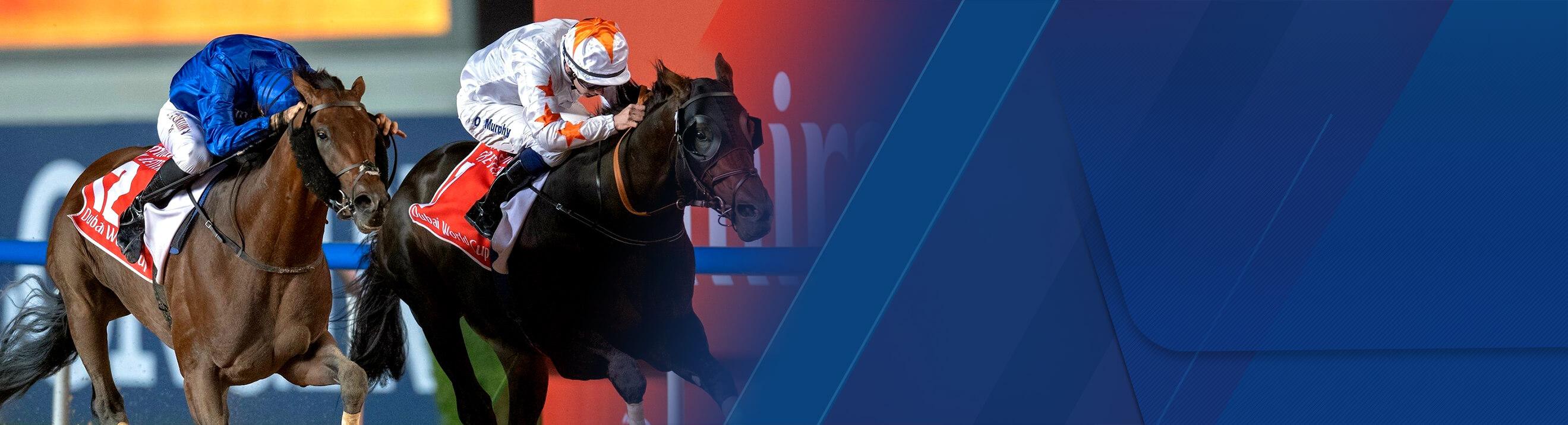 Dubai horse racing betting legal sports betting in arizona