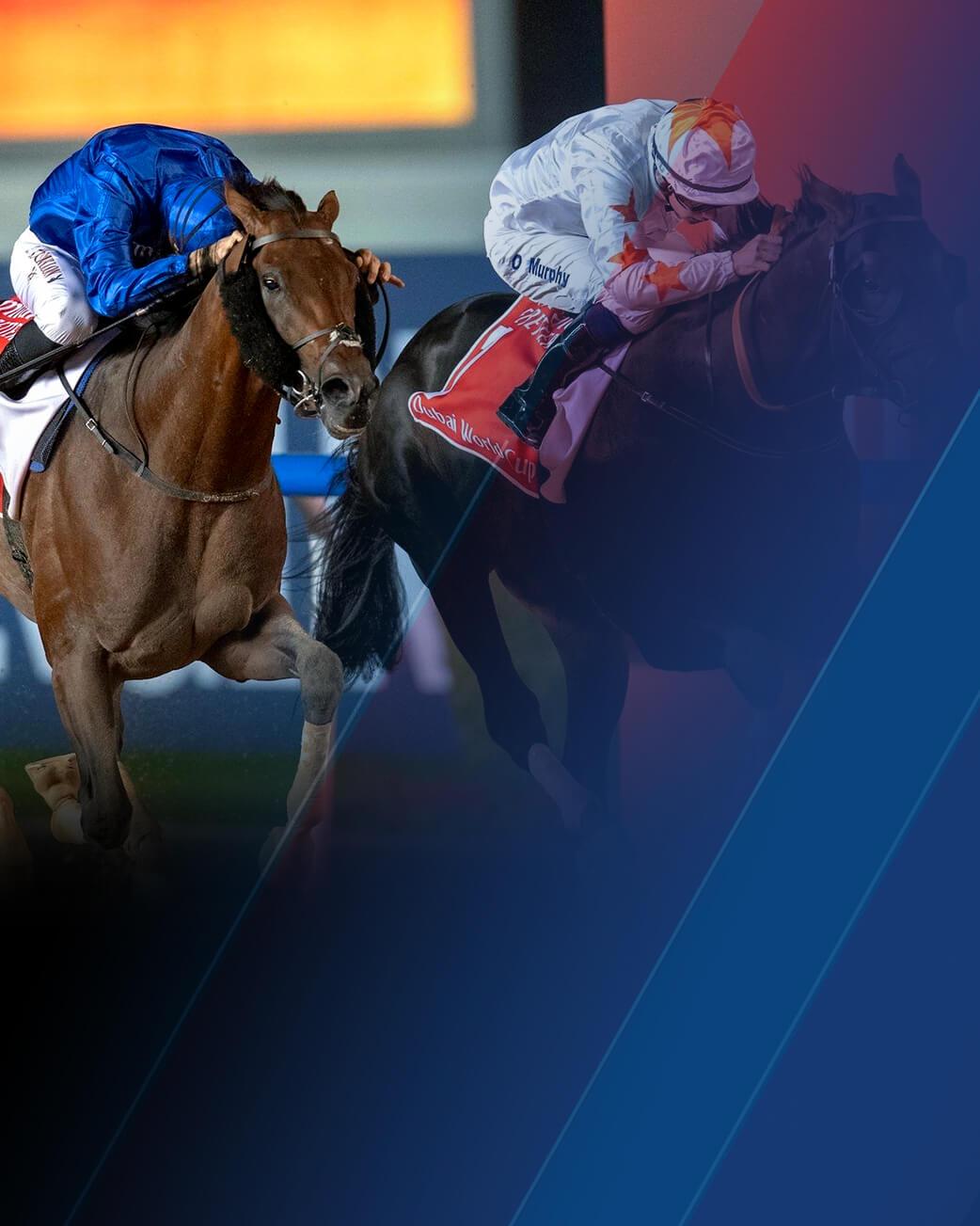 Horse racing dubai betting line if i bet on umbc