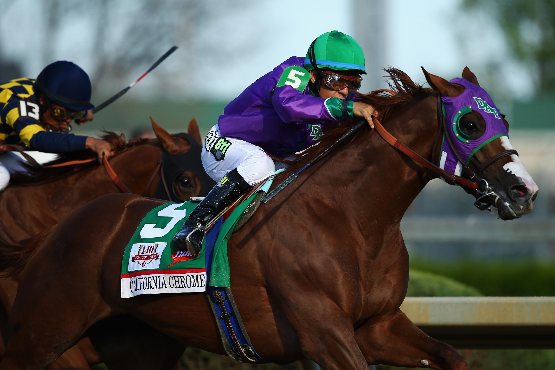 california chrome betting odds