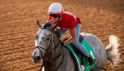 Saudi Cup Tacitus Betting: Favorite or Another Teaser?