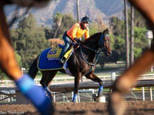 Aqueduct Racing Suspended: Local Worker Gets Coronavirus