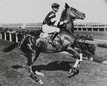 Vintage Horse Racing - Courtesy of unsplash.com