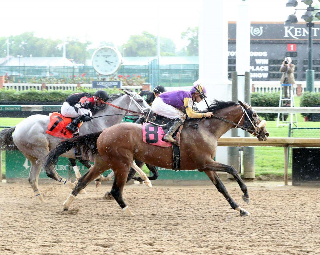 Betting on horse racing 101 gridiron betting