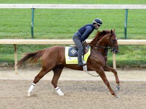 Attachment Rate Horse