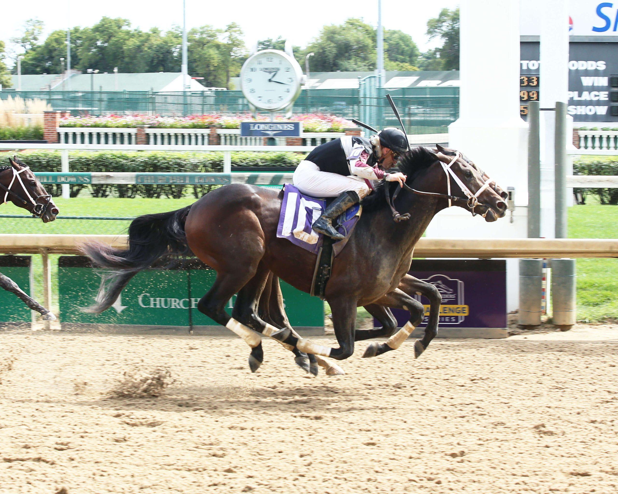 Kentucky Derby 25 Odds South Bend   Horse Racing News