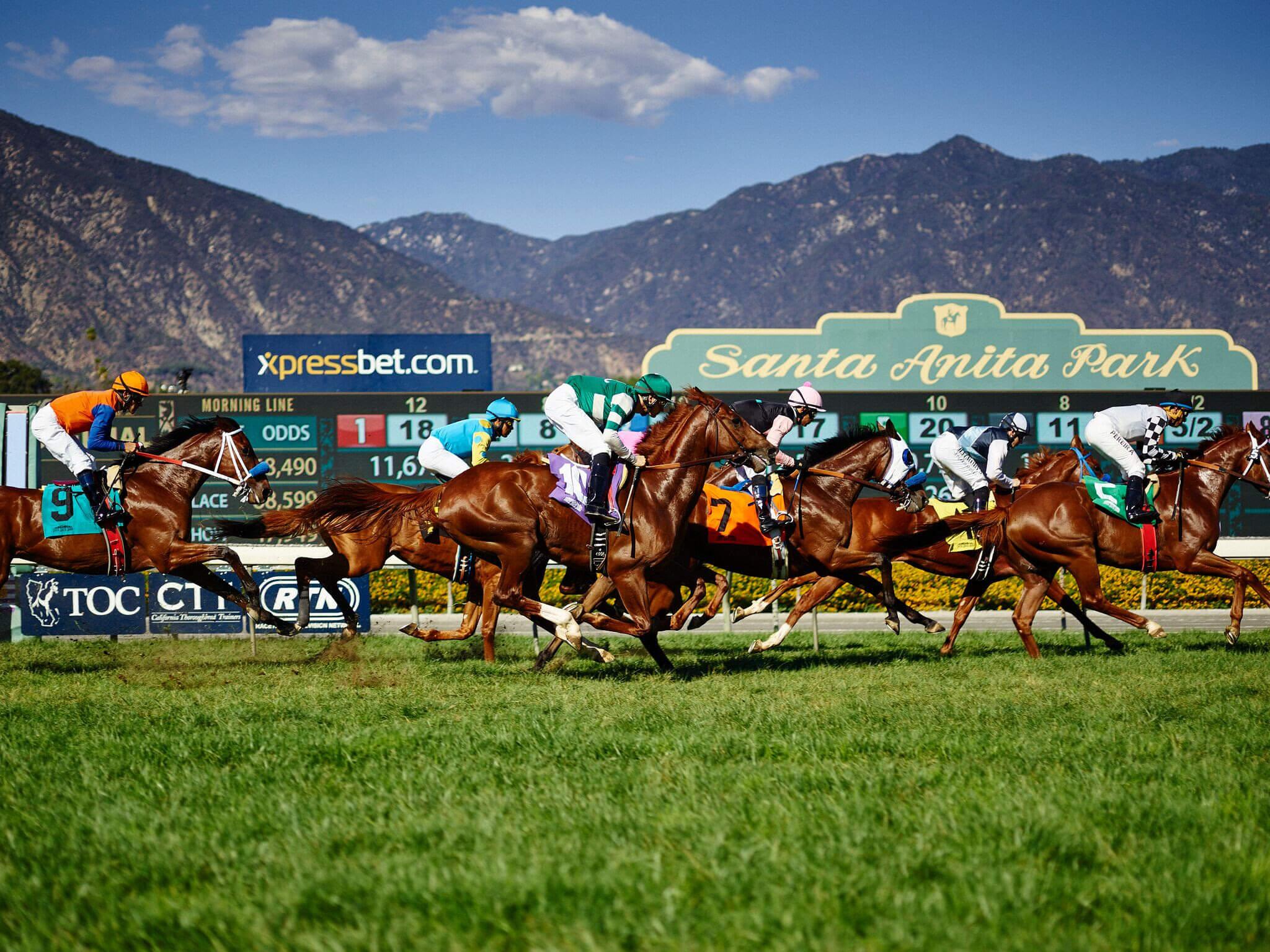 Santa ana park racing race program betting tips tim bettinger photography
