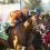 Del Mar Saturday: 9 Breeders' Cup Sprint Hopefuls Set For Bing Crosby